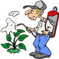 FITO1: Corso base per utilizzo fitosanitari (Patentino utilizzatori professionali) copia 1