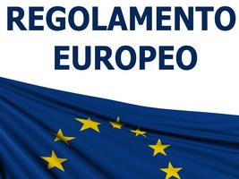Regolamento UE 2016/679 (8 ore)